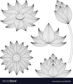 Lotus Flower Art, Watercolor Flower, Lotus Art, Flower Pattern Drawing, Tattoos Realistic, Collages, Lotus Design, Flower Coloring Pages, Lotus Tattoo