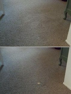 This business provides deep carpet, area rug, tile, upholstery, grout and mattress cleaning services. They also specialize in pet smell removal and stain control for commercial and residential clients.