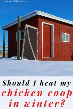 Pet Chickens, Raising Chickens, Chickens Backyard, Chicken Coop Winter, Chickens In The Winter, Freezing Eggs, Guinea Fowl, Coops, Homesteading