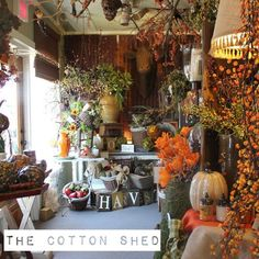 fall display in shop - Google Search