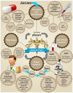 The phases of clinical trials. Phase I: clinical pharmacologic studies Phase II: clinical investigations Phase III: large-scale randomized controlled trials Phase IV studies, or post-marketing surveillance Nursing Research, Clinical Research, Medical Research, Medan, Phase Iv, Drug Discovery, National Institutes Of Health, Pharmacology, Fitness Diet