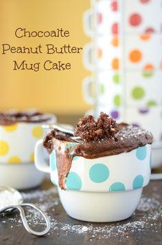 Chocoalte Peanut Butter Mug Cake  from thenovicechefblog.com