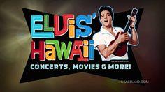 'Gates of Graceland'. Elvis' USS Arizona Memorial Benefit Concert and all good things Hawaii. Elvis Presley Videos, Elvis Presley Graceland, Rock N Roll, Uss Arizona Memorial, Elvis Sings, Memphis Tennessee, Im Crazy, 40th Anniversary, Good Looking Men