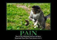 Pain  Pain is just weakness leaving the body. Sometimes your spirit tags along with it.