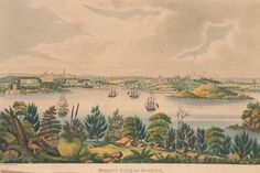 "View: North view of Sidney, New South Wales. From the exhibition ""Elegance in Exile"" at the National Portrait Gallery, Canberra. Indigenous Education, Colonial Art, Bird People, Lovers Eyes, Bonnie N Clyde, Australian Curriculum, National Portrait Gallery, Historical Pictures, Sydney Australia"