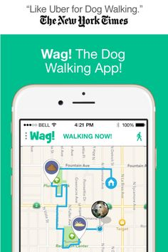 Wag! The dog walking app. Book dog walkers & track the walks LIVE