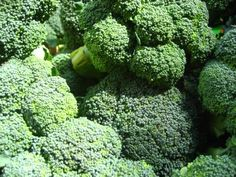 The Best Detox The most powerful natural inducer of our livers detoxifying enzyme system is sulforaphane, a phytonutrient produced by broccoli. Broccoli Benefits, Broccoli Sprouts, Brocolli, Prevent Bloating, Best Detox, Garden Yard Ideas, Growing Vegetables, Easy Cooking, Eating Well