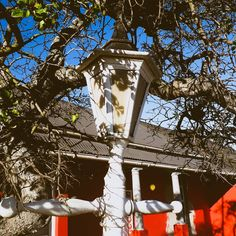 Old lamp post from one of my morning walks. Photography Projects, Outdoor Photography, Mobile Photography, Old Lamps, Port Elizabeth, Photo Diary, Tree Branches, Walks, Fundraising
