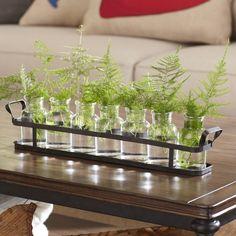 8-Piece Glass Bottle Set with Metal Tray #birchlane