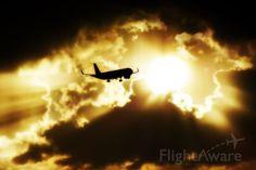 Flight to sunset