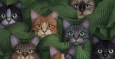 Lovely cats!
