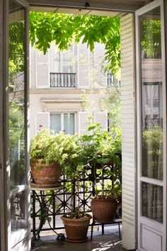 Pairs of French doors swing open to connect the flat's living room to the balcony garden. With a Paris balcony garden that makes elegance look effortless, actress Diane Valsonne shares 10 ideas to steal to add charm to any small urban garden: Small Balcony Design, Small Balcony Garden, Balcony Flowers, Balcony Plants, Balcony Ideas, Patio Ideas, Balcony Gardening, Small Balconies, Indoor Plants