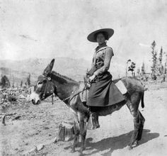 Myrtle and her donkey. Myrtle Stedman poses outdoors on a burro near the mining town of American City (Gilpin County), Colorado.Date August, 1900. Source: Stedman Family Album. Courtesy: Western History/Genealogy Department, Denver Public Library, Denver, Colorado (USA).