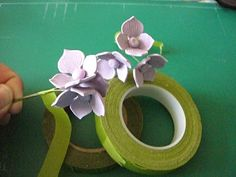 Hortensia how to
