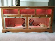 Homemade Reptile Cage | DIY Snake Enclosure | DIY Reptile Cages | Pinterest