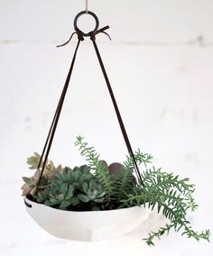 Faceted Hanging Tray -- love this planter --maybe they make one that isn't hanging?