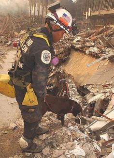 40 Photos of Hero Dogs of 9/11 - Dogs of 9/11 page 4