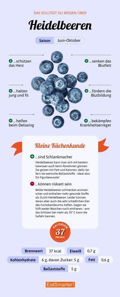 Das solltest du über Heidelbeeren wissen | eatsmarter.de #heidelbeeren #blaubeeren #infografik