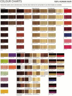 Permanent Color Chart  Ion At Home  Hair    Colour