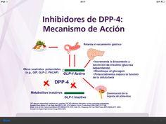 Mecanismo accion