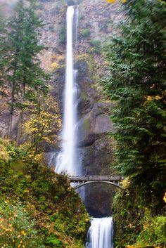 Multnomah Falls | www.adagio-images.com | www.facebook.com/adagioimages | #multnomah_falls #oregon #waterfall #bridge #water Prints available on the website.