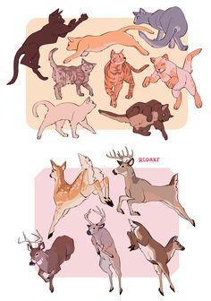 animal sheets