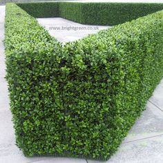 Artificial Hedges made to any Shape or Size