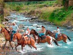Horseback to Blue Volcanic River & Waterfalls. One of the many things you can do in Costa Rica.