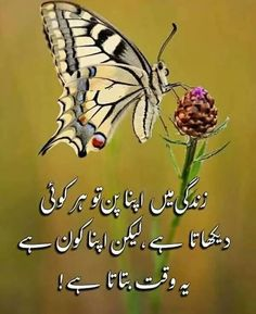Urdu Quotes With Images, Love Quotes In Urdu, Poetry Quotes In Urdu, Muslim Love Quotes, Urdu Love Words, Life Quotes Pictures, Inspirational Quotes About Success, Beautiful Islamic Quotes, Best Islamic Quotes