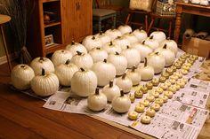 Fall Wedding Series #3 - Pumpkins, Burlap and Mason Jars ~ Create. Share. Repeat!  Painted White Pumpkins