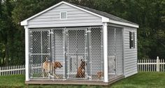 10x16 Dog Kennel For Large Breed Dogs