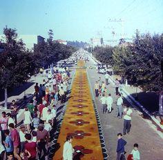 Tapetes de serragem da Vila Santa Isabel (São Paulo). Década de 1960. Colaborou com a foto: Tammaro Luigi Giaccio