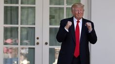 Yes there's a guy dedicated solely to coming up with weird Donald Trump bets  If the Trump administration is going to be a nightmare bacchanalia of buffoonery and incompetence the least we can all do is make a little money off it right?  Irish betting house Paddy Power who's been offering odds on Trump's impeachment since he was sworn in announced it now has a bookie designated entirely to the burning tire fire that is the Trump administration.  SEE ALSO: The Rock and Mark Zuckerberg are…