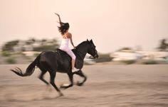 Верховая езда и конные прогулки в Санкт-Петербурге Санкт-Петербург