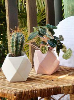 Valentines Ideas: Gem Vessel Pink by Beneath The Sun Cactus, Ceramic Planters, Planter Pots, Hanging Vases, Bbq Area, Green Rooms, Beautiful Interiors, Indoor Garden, Garden Inspiration