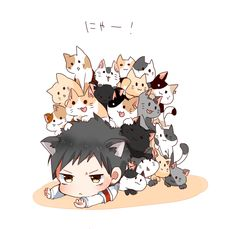 My kawaii neko Anime Neko, Anime Art, Karate Kid Quotes, School Rumble, Dance Wallpaper, Iron Fortress, Gekkan Shoujo, Manga Illustration, Manga Games
