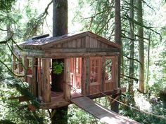 Yikes! A rope bridge! Looks pretty high up, too. This is one of Peter Nelson's treehouse designs.