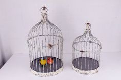Yricas Design  Metal Bird Cage, 20-inch and 17-inch, Set of 2