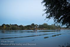 A fishing boat makes a sweeping turn on the Sacramento river as the moon rises above the trees.