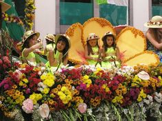 Festival of Flowers in Madeira, Portugal Portugal, Flower Festival, Festivals, Flowers, Porto, Saints, Wood, Concerts, Royal Icing Flowers