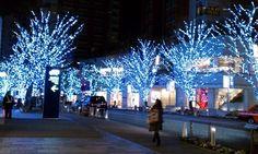 けやき坂のクリスマスイルミネーション|ボディメイク=ファッション パーソナルトレーナーおぜきとしあきのボディメイクブログ 本物のボディメイクを世界中に!