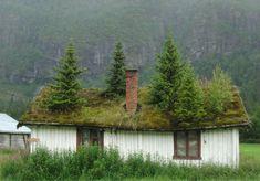 ノルウェー > 屋根に草が生える家