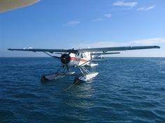 Water plane....flying into the dock of my hotel was just a little scary on a plane that small.