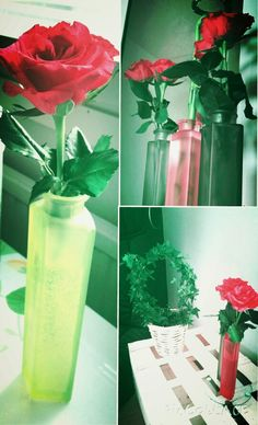 Roses in my home ♡
