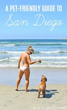 Traveling with a dog, especially one that is thirty-five pounds and therefore cannot fit in a purse, requires a certain amount of research and planning, and ideally, a destination that is already dog welcoming. I quickly realized that for my first big pet project, I couldn't have asked for a more pet-friendly destination than San Diego.