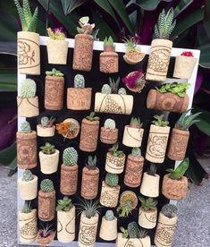 Very creative succulent wall🤗 Your next DIY project? 📷 @cultivando_flores_plantas#olivrahomedecor#cactus#cacti#cactuslover#succulent#succulents#cactusmagazine#cactusclub#cactusthailand#cactuslove#cactusmovement#cactuslover#cactus🌵#cactusdecor#cactuscollector#🌵