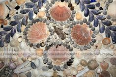 The Shell House, Cilwendeg, near Boncath. Scallop Ideas, Shell House, Shell Game, Seashell Art, Small Windows, Whittling, Mosaic Art, Sea Shells, Victorian