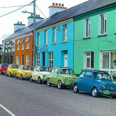 Fiat 500s - stand out no matter how hard they try to blend in.