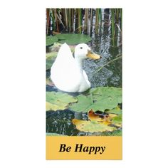 Be Happy Duck Card