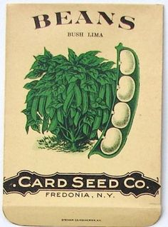 Card Seed Co, Fredonia, New York